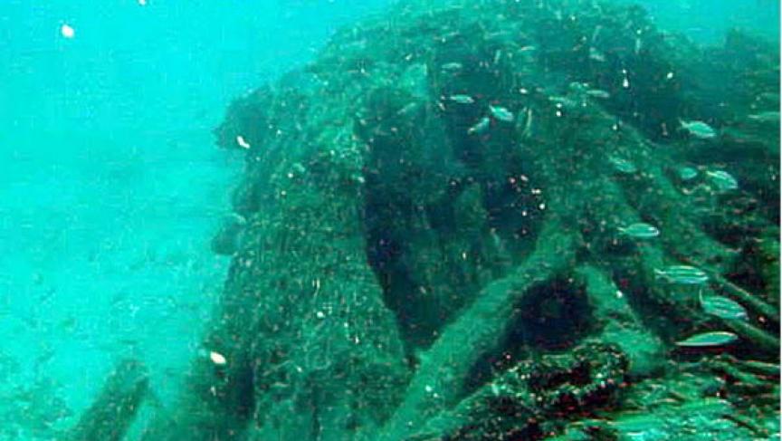 Underwater cypress stump
