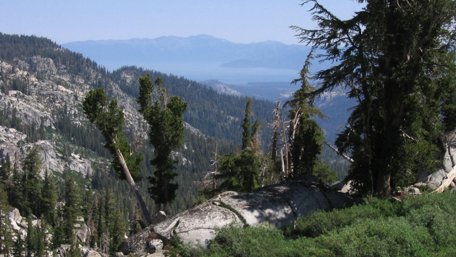 Sierra Nevada Mountain Range Is Getting Bigger Rapidly The World From Prx