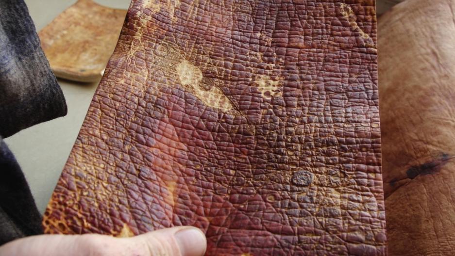 MycoWorks' mushroom leather.