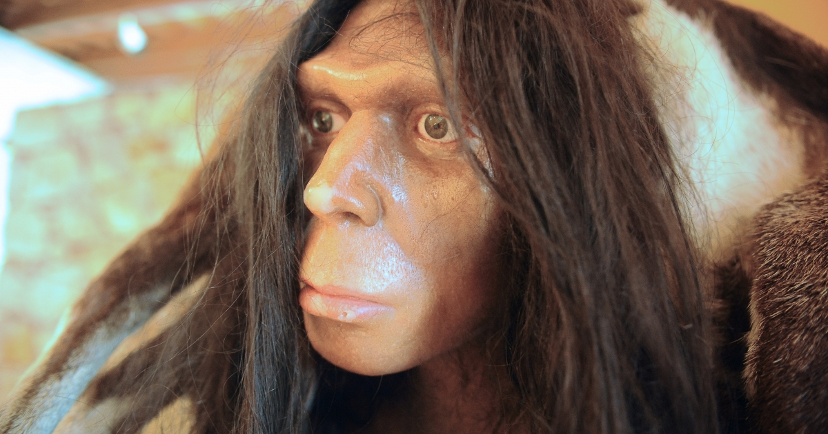 A Harvard geneticist is looking for a woman to give birth to a Neanderthal baby.</p>