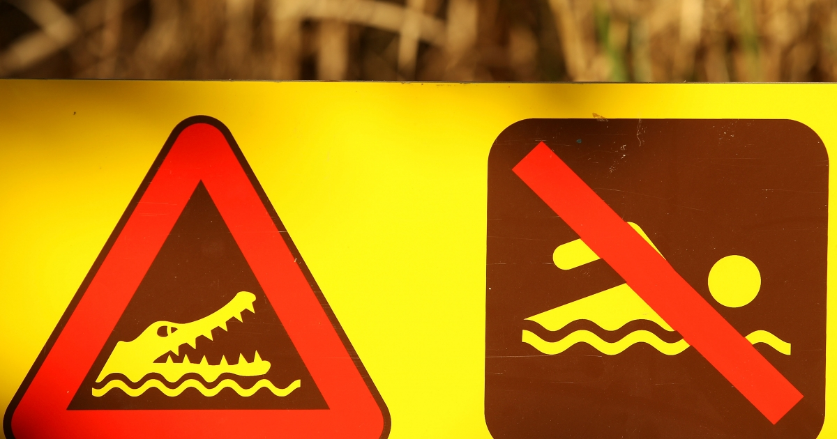A no-swimming sign warning of crocodiles is seen at Finch Bay in Queensland, Australia, on June 20, 2011.</p>