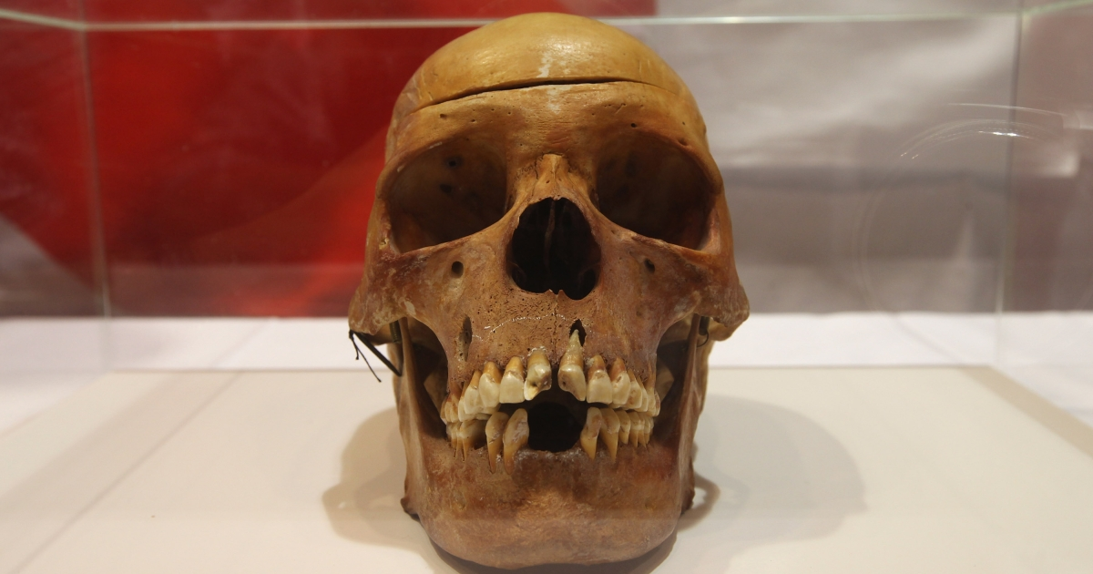 A new study found the diet of early human resembled that of chimps.</p>