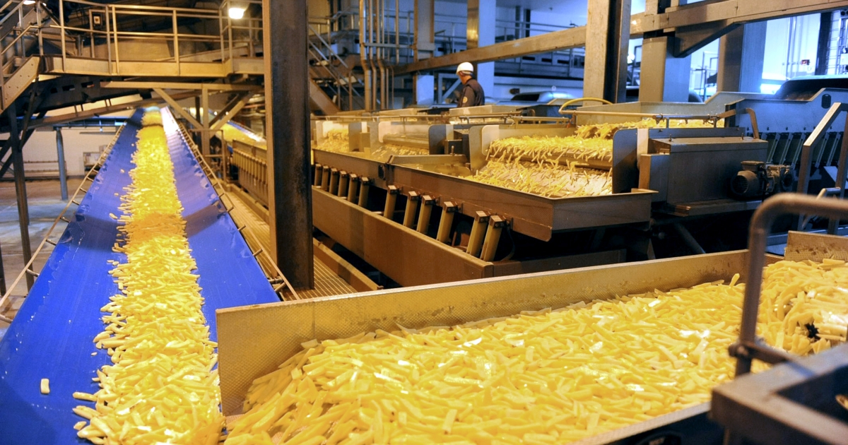 The production line of French fries at the McCain factory in Harnes, northern France.</p>