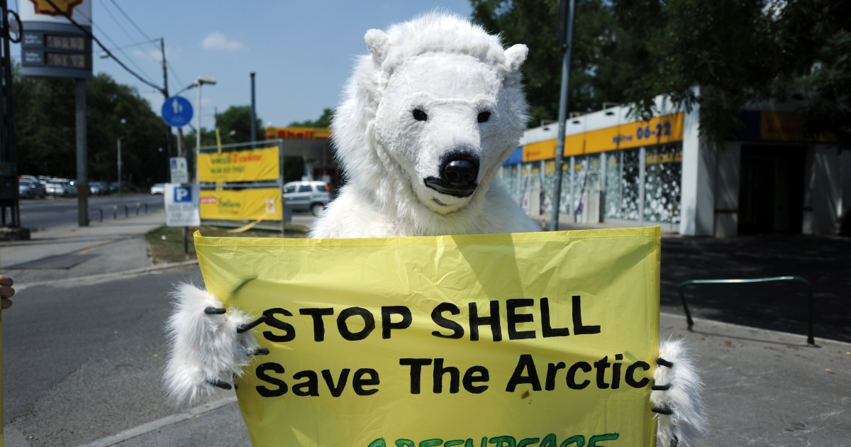 A Greenpeace activist, wearing an polar bear costume, holds a banner reading 'Stop Shell Save the Arctic' and informs the press about the Greenpeace new campaign against the oil experimental research drilling of Shell Oil Company on the Artic, as he stands in Budapest, nearby a Shell petrol station, on June 21,2012.</p>