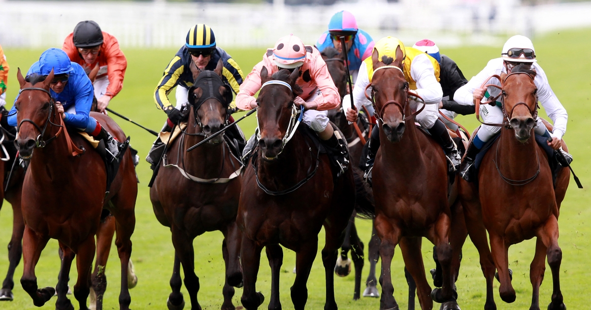 Luke Nolen riding Black Caviar (Salmon color, black spots) win The Diamond Jubilee Stakes during day five of Royal Ascot at Ascot racecourse on June 23, 2012 in Ascot, England</p>