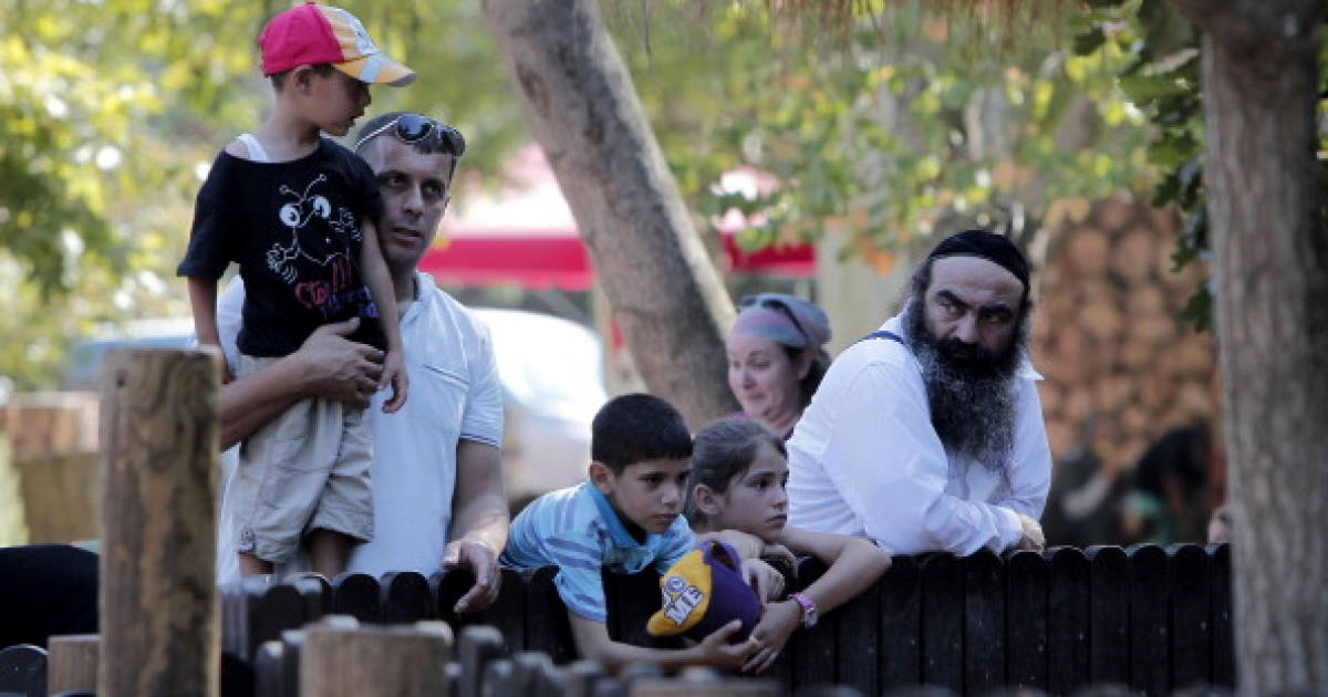 Israelis visit Jerusalem's Biblical Zoo on August 20, 2012.</p>