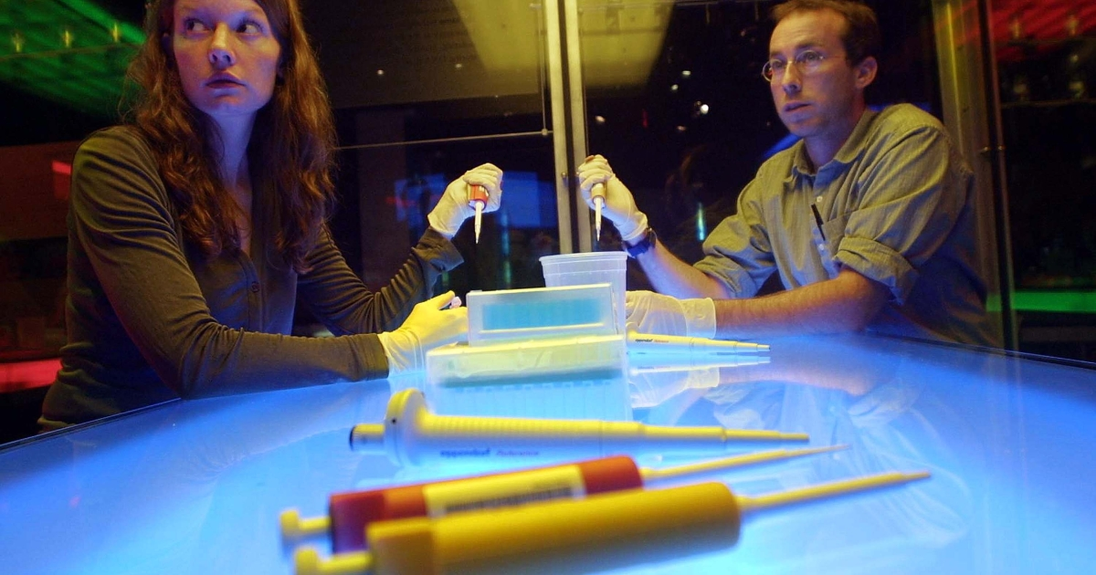Students participate in a genomic laboratory workshop August 15, 2001 at the American Museum of Natural History in New York City. The workshop instructed students on procedures for isolating and sequencing DNA to provide a map of the human genome.</p>