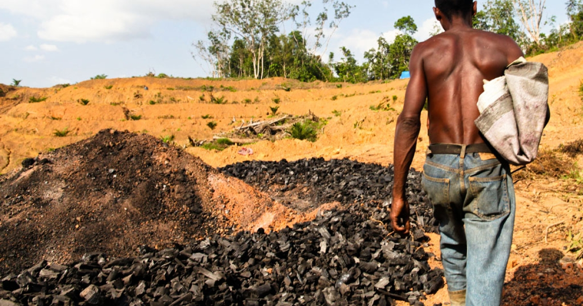 Magwiie Willy walks up to his tent in Bomi County, Liberia, past the remains of a rick of burnt logs that produced US$450 worth of charcoal after three weeks' work.</p>
