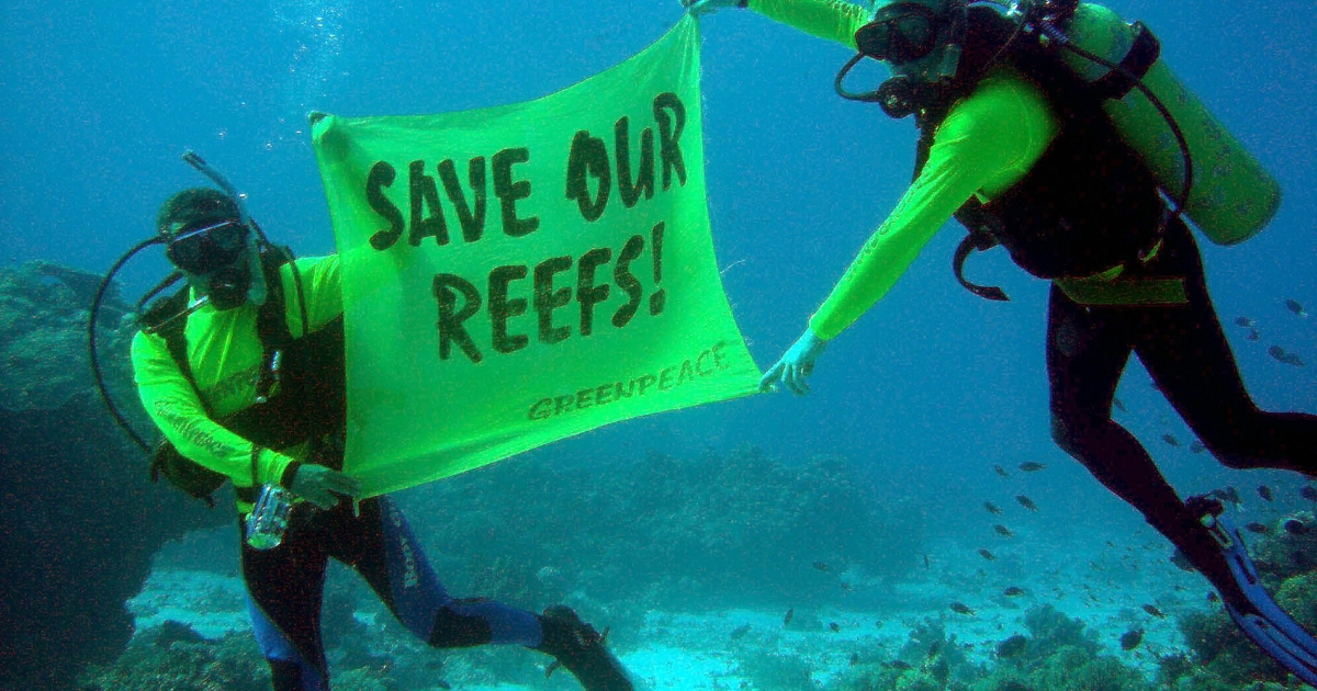 Crew members from the Greenpeace flagship Rainbow Warrior display a banner saying 'Save our reefs!' at the world famous Tubbataha Reef National Marine Park and UNESCO World Heritage Site in the southern Philippines, 30 October 2005.</p>