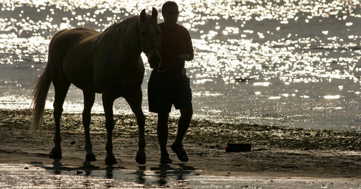 Mark Stengle, from Jamul, California walks his horse along the beach.</p>