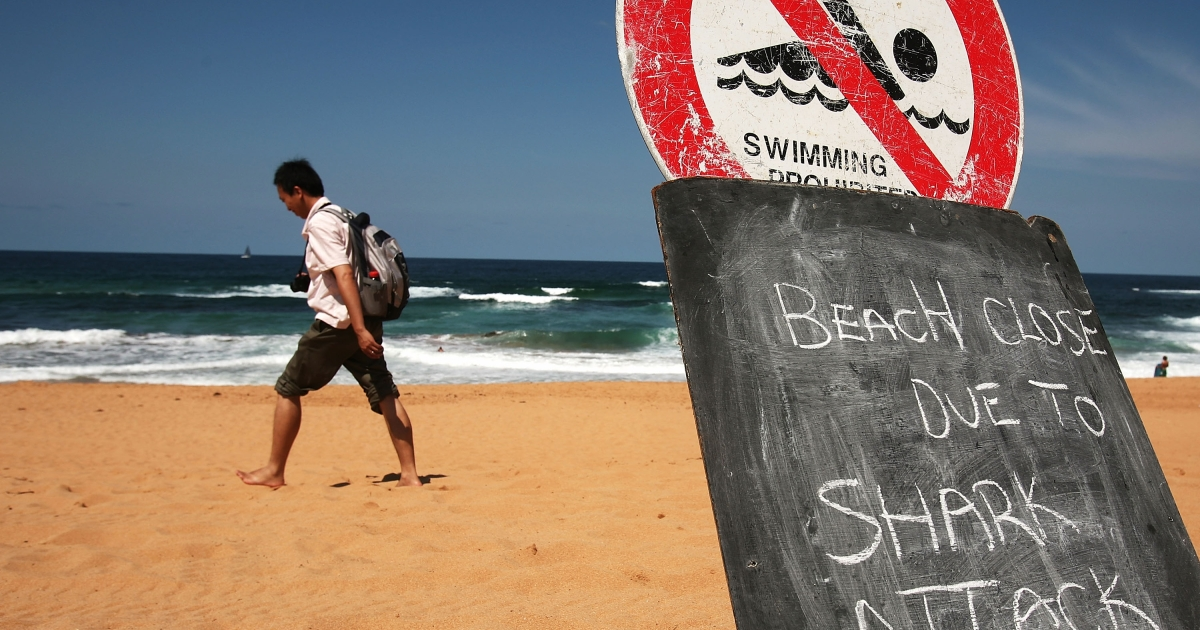 The shark attack was the third in as many weeks in Sydney waters, following previous attacks on a surfer at Bondi Beach and a Navy diver in Sydney Harbour.</p>