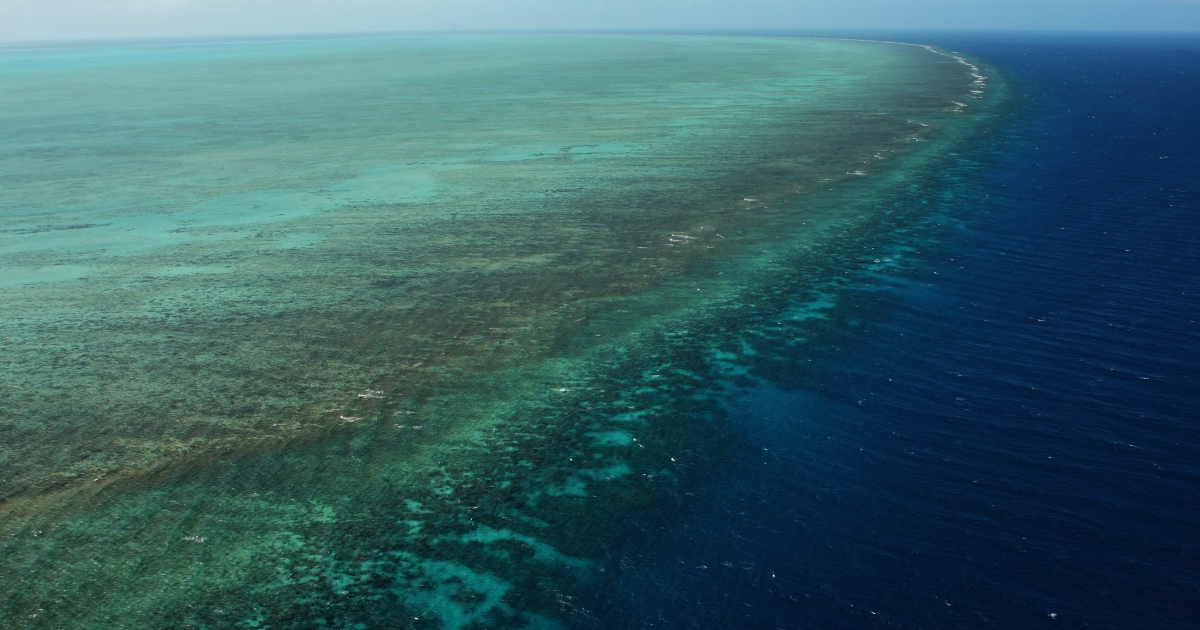 Aerial views of The Great Barrier Reef are seen from above on August 7, 2009 in Cairns, Australia.</p>