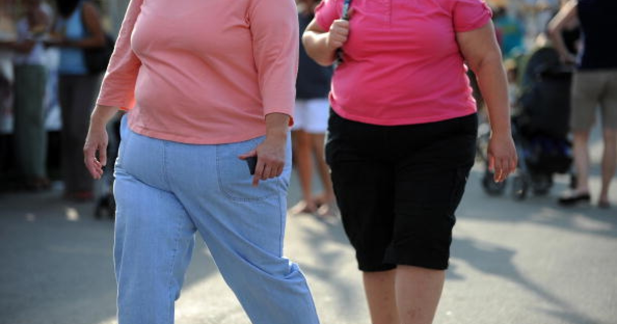 Two overweight women walk at the 61st Montgomery County Agricultural Fair on August 19, 2009 in Gaithersburg, Maryland.</p>