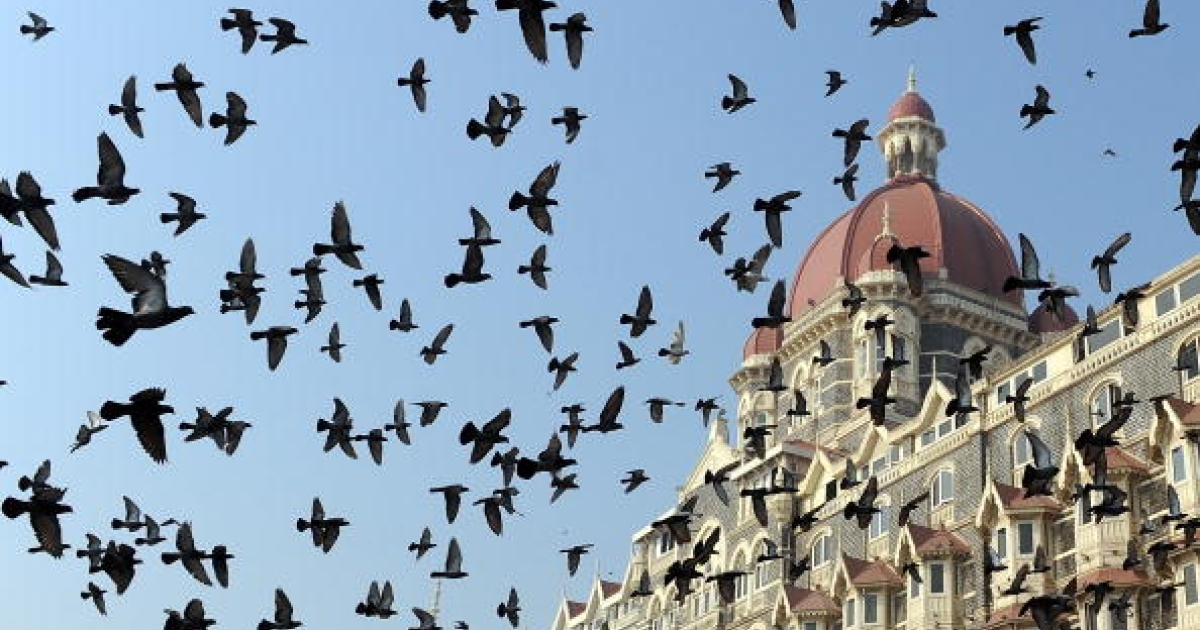 Pigeons fly outside the landmark Taj Mahal hotel - one of the sites of last year's terror attacks - in Mumbai on November 26, 2009.</p>