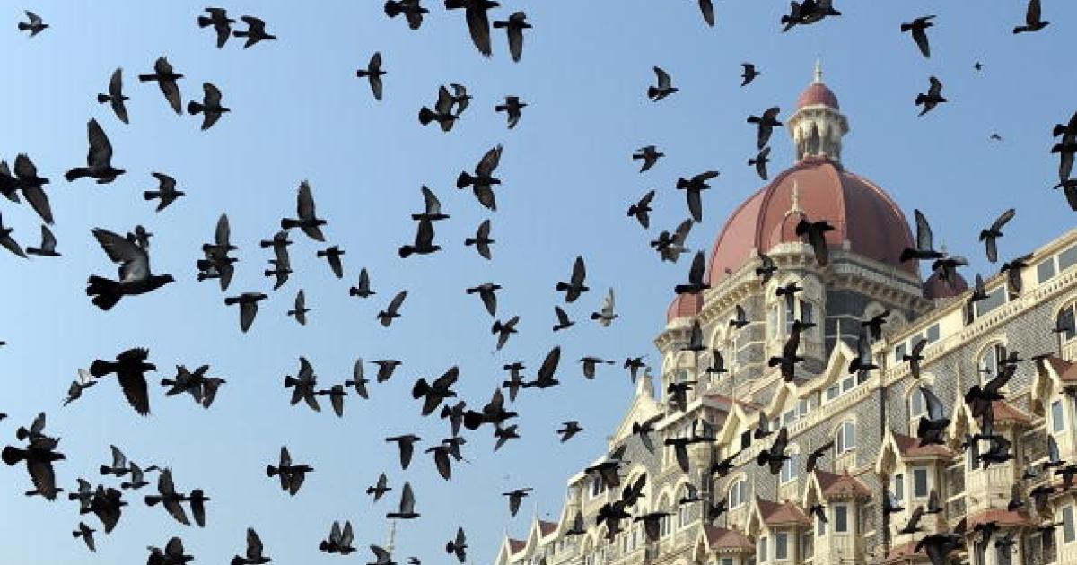 Pigeons fly outside the landmark Taj Mahal hotel - one of the sites of last year's terror attacks - in Mumbai on November 26, 2009.</p>