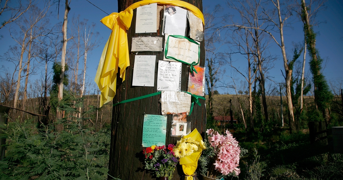 Flowers and messages are placed on a fire-damaged tree on the one year anniversary of 'Black Saturday', Australia's worst ever wildfires and worst peace-time disaster, on Feb. 7, 2010 in Strathewen, Australia.</p>