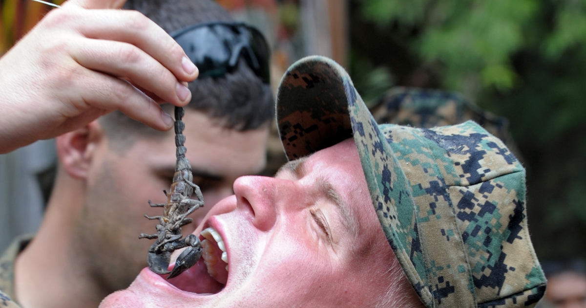 A US Marine eats a scorpion as he participates in a jungle survive program as part of the annual combined military exercise Cobra Gold 2010 at a Navy base in the Pacific.</p>