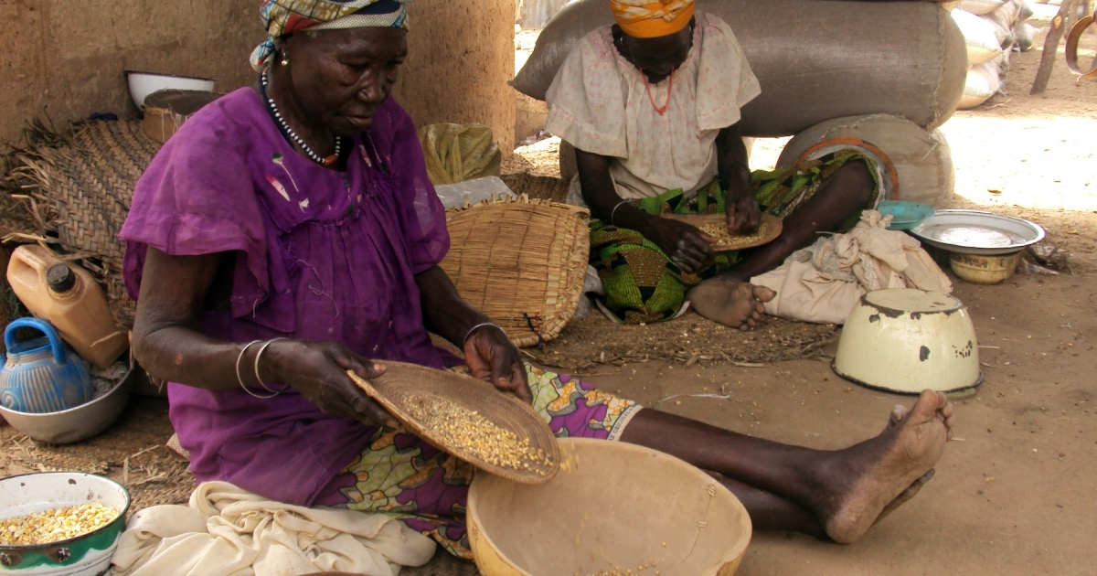 This June 1, 2010 photo shows a woman picking up spilled maize among sacks of grain in a market in the northern Nigerian town of Maiadua, bordering Niger. At the time, thousands of Niger nationals had flooded Nigeria in search of food as a shortage worsened in the West African country.</p>