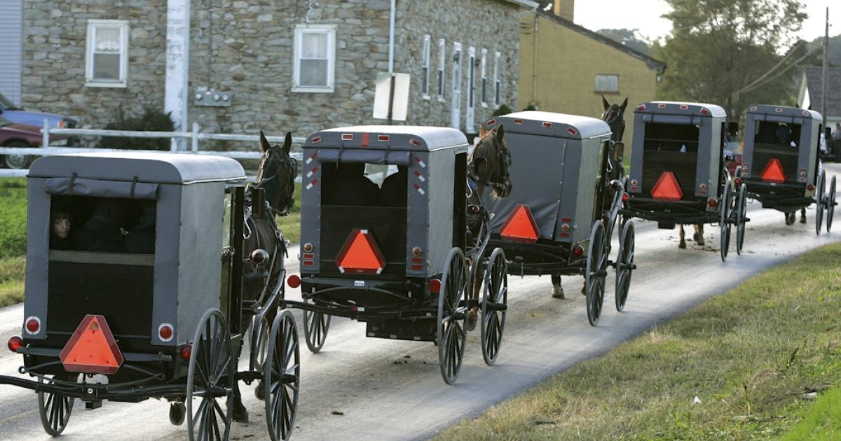 A young Amish boy looks out of the back of a buggy during a funeral procession for victims of the 2006 school shooting in Nickel Mines, Pennsylvania, in which 10 young girls were shot and five of them killed.</p>