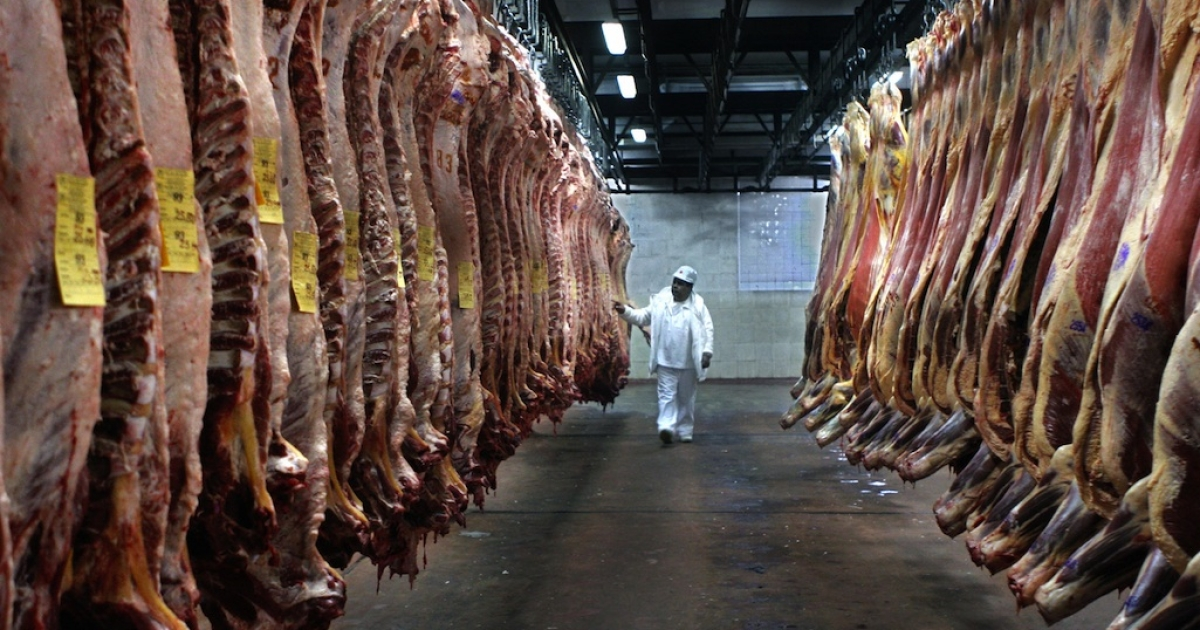 A freezer at a meat processing plant in the province of Buenos Aires, on July 29, 2005.</p>