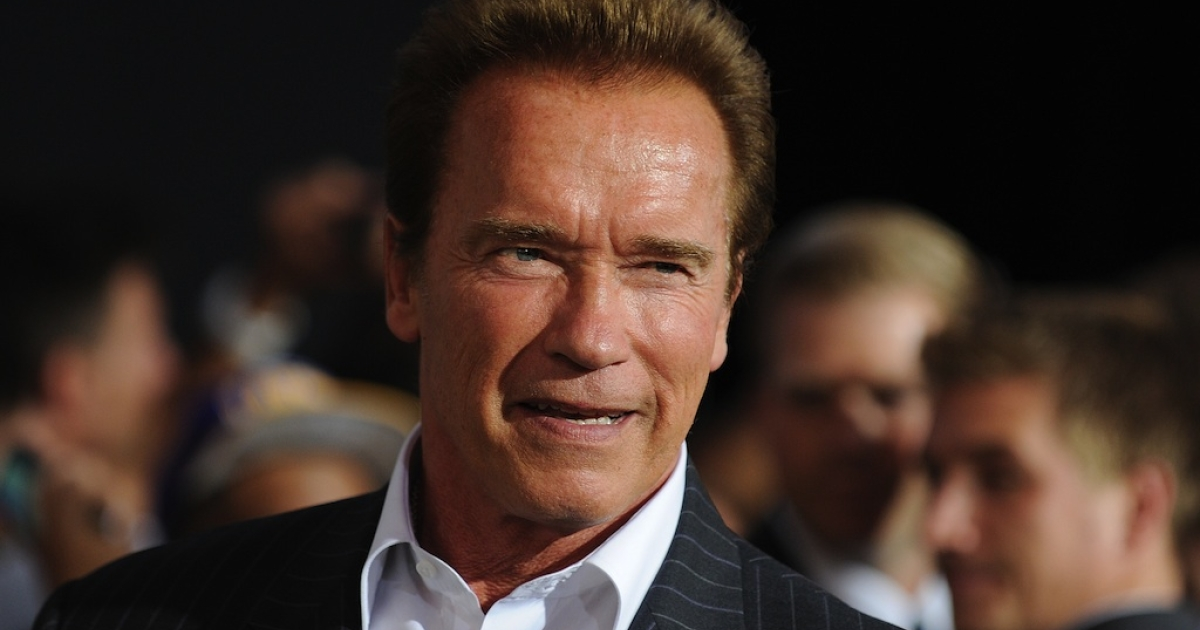 Schwarzenegger's new book digs up affairs and arguments.</p>