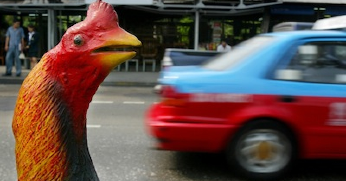 A cement chicken on a busy street in Bangkok, Thailand.</p>