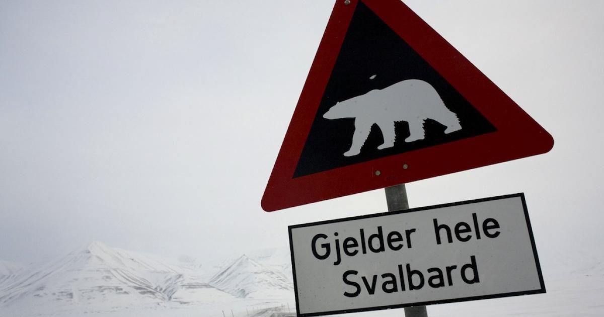 Beware of the bears in Norway.</p>