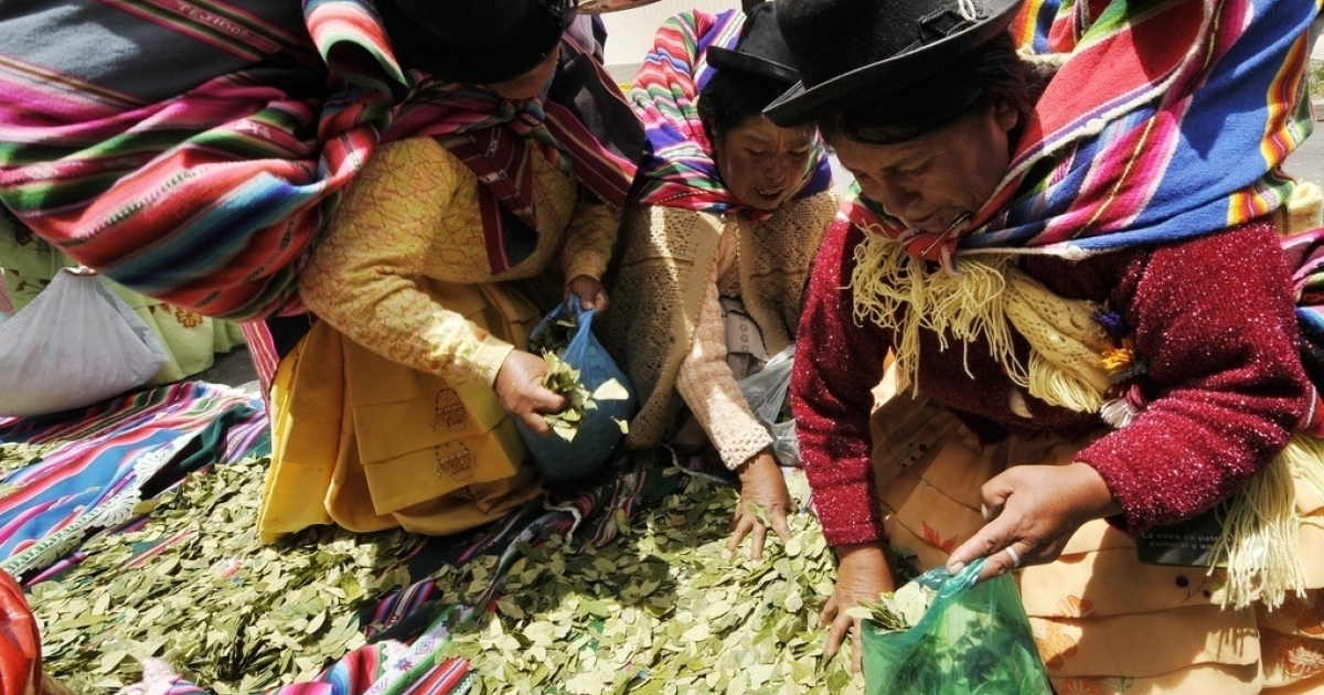 Aymara women chew coca leaves in front of the U.S. Embassy to Bolivia on Jan. 26, 2011.</p>