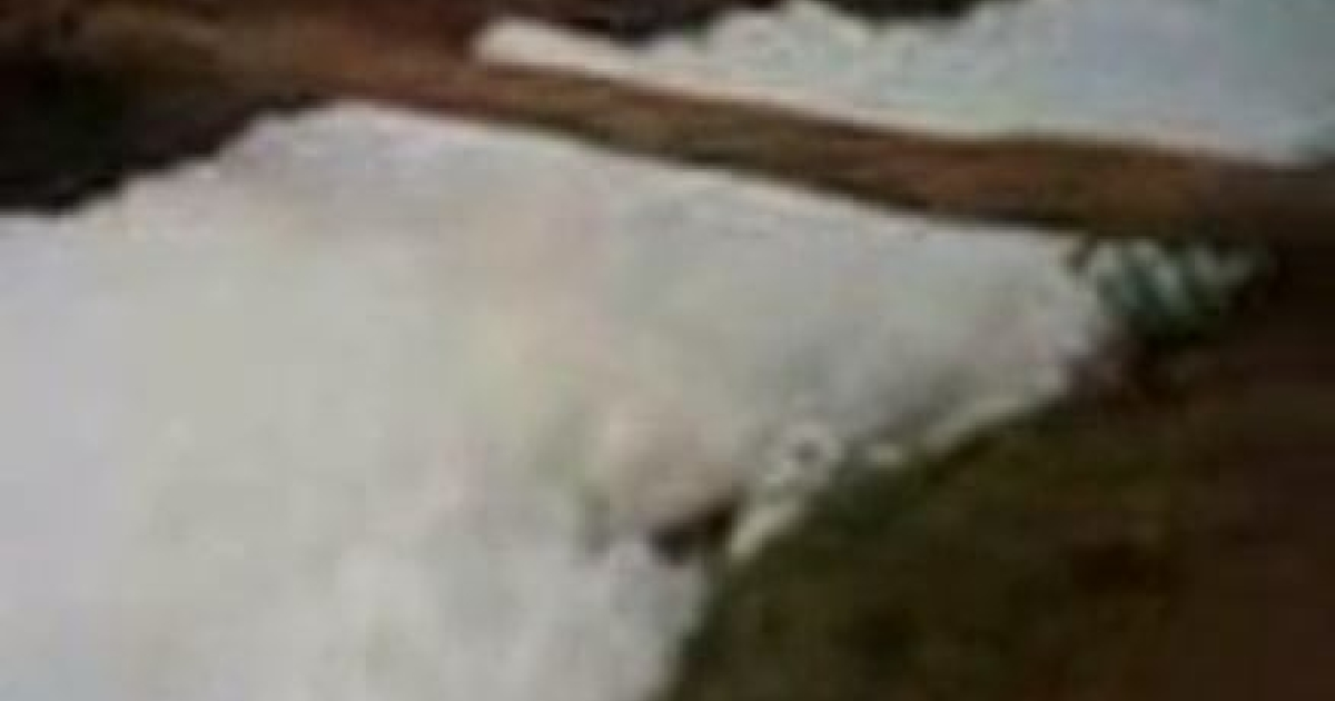 Brazil's Ypo'i creek last Wednesday, frothing with foam.</p>