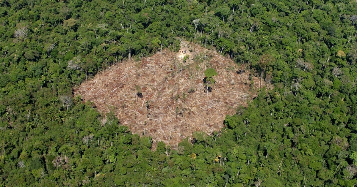 A photo  released by Brazil's environment ministry shows a deforested area in the rain forest in the southern Para state.</p>