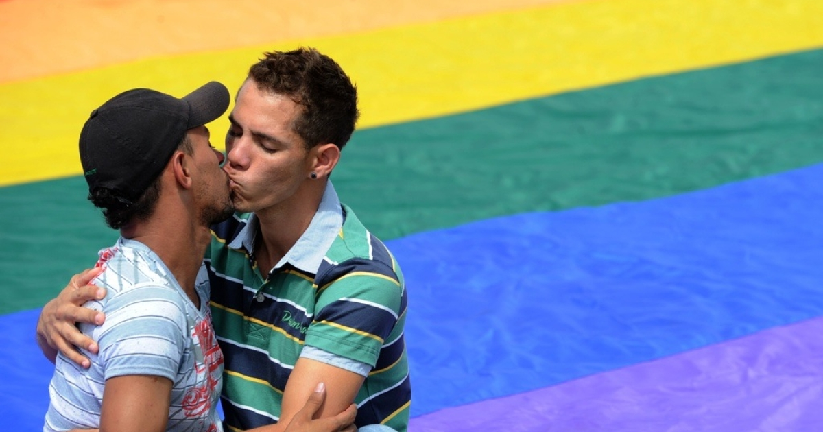 A gay couple kisses during a Gay Parade Against Homophobia in Brasilia, on May 18, 2011.</p>
