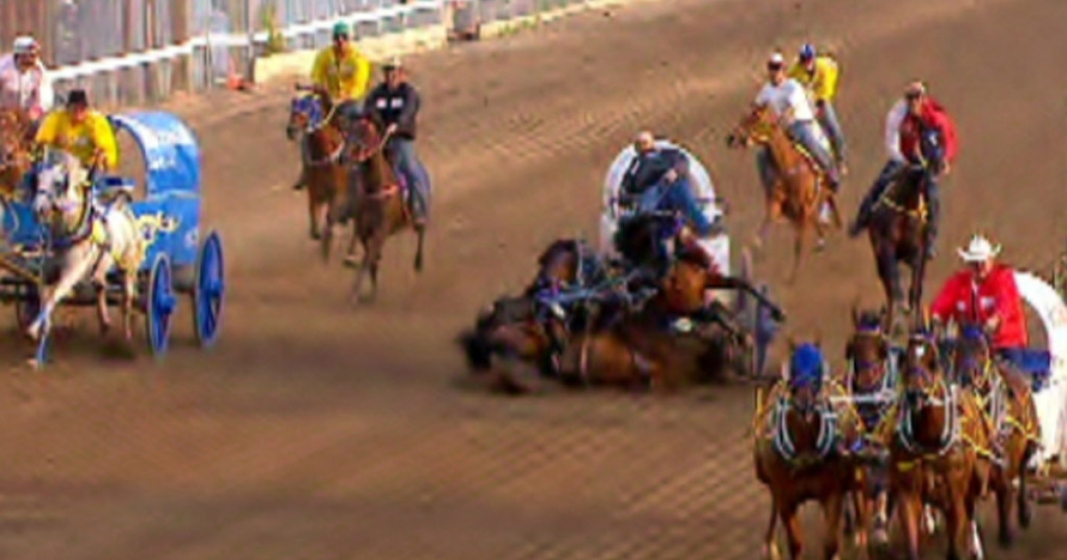 One of Chad Harden's horses apparently collapsed and died during a chuckwagon race at the Calgary Stampede on July 12, 2012, causing the others on the team to crumple to the ground. Three horses died.</p>