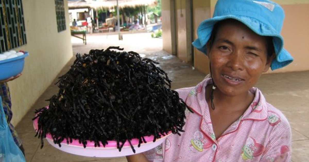 A Cambodian woman in Skuon sells her fried tarantulas near the town's bus depot.</p>