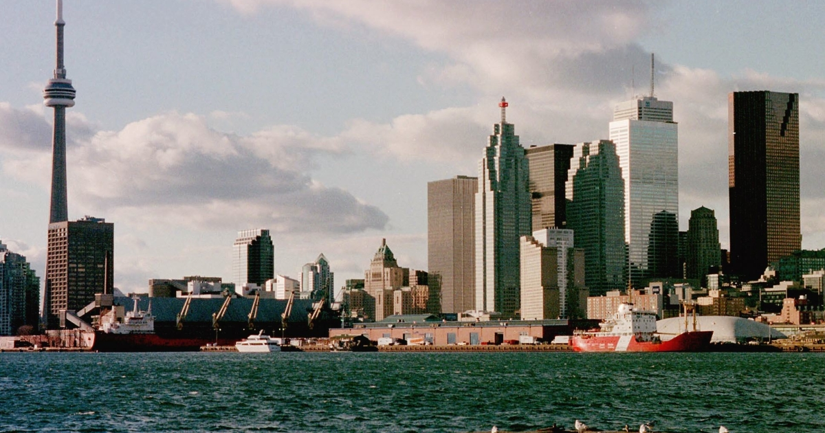 Environmentalists estimate that 1 million birds die each year in collisions with Toronto's buildings.</p>