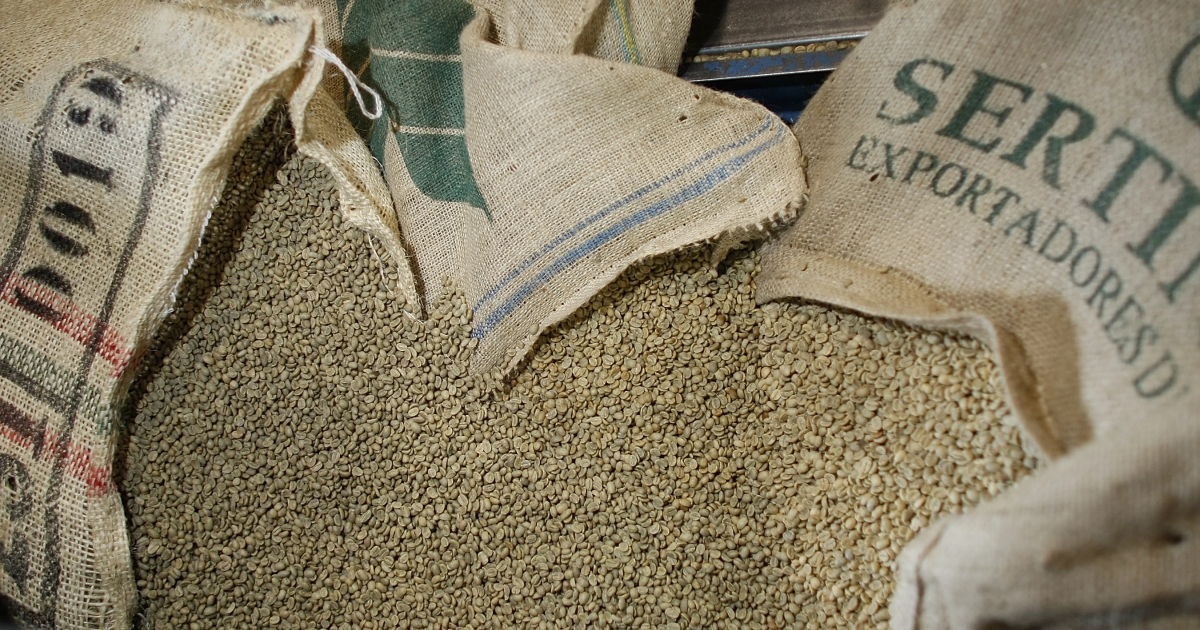 Green coffee beans wait to be poured into the roaster at Colonial Coffee Roasters March 3, 2008 in Miami, Florida. Coffee prices recently hit its highest level in 34 years.</p>