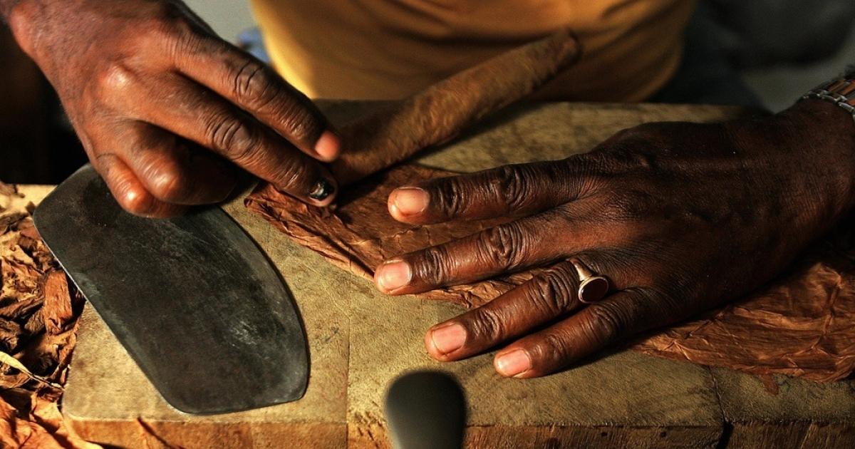 A Cuban cigar-maker rolls a cigar on June 23, 2005.</p>