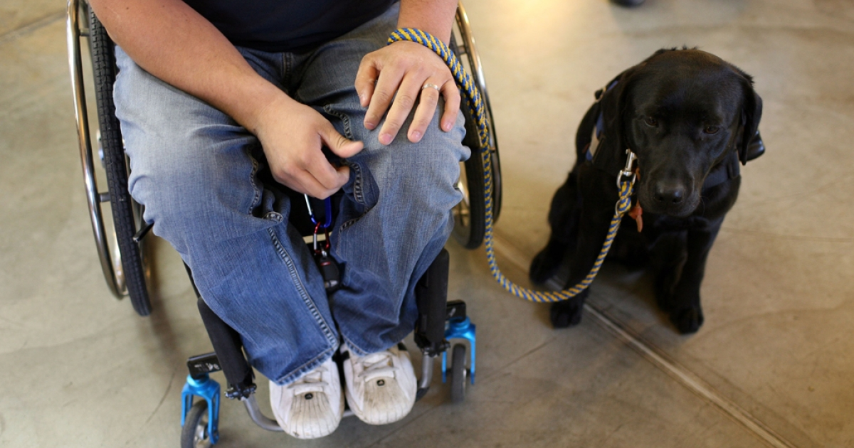 Andrew Pike, a veteran of the U.S. Army 82nd Airborne who was shot and paralyzed during the Iraq war, sits with his new service dog