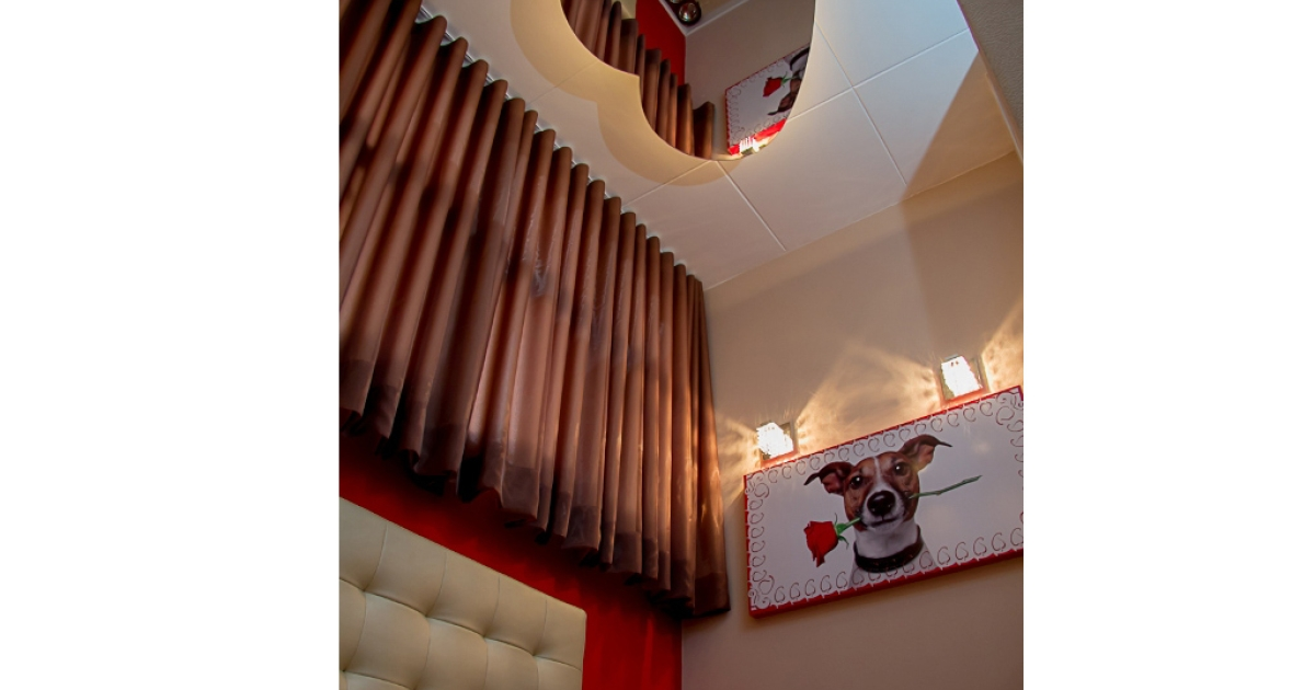 A room is pictured in Brazil's new love hotel for dogs, Animalle Mundo Pet.</p>