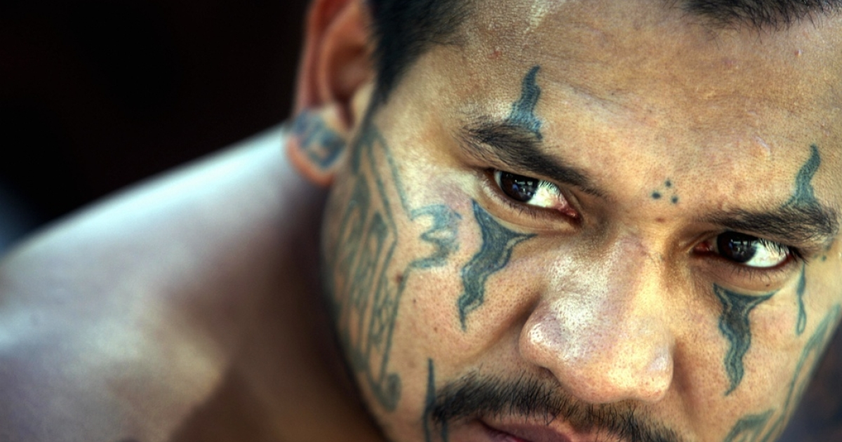 An arrested member of the Mara Salvatrucha gang faces the press in El Salvador's capital of San Salvador.</p>
