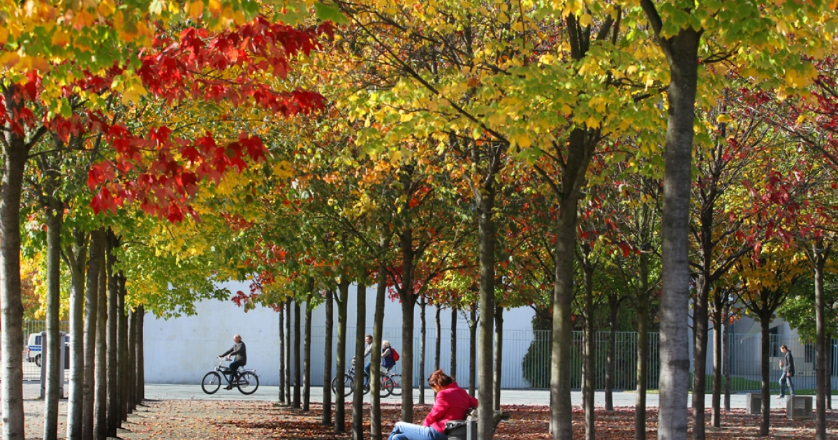 Cyclists drive past trees with colored leaves in Berlin's governmental district on October 2, 2012. Meteorologists forecasted warm and sunny autumn weather for the following days in the German capital.</p>