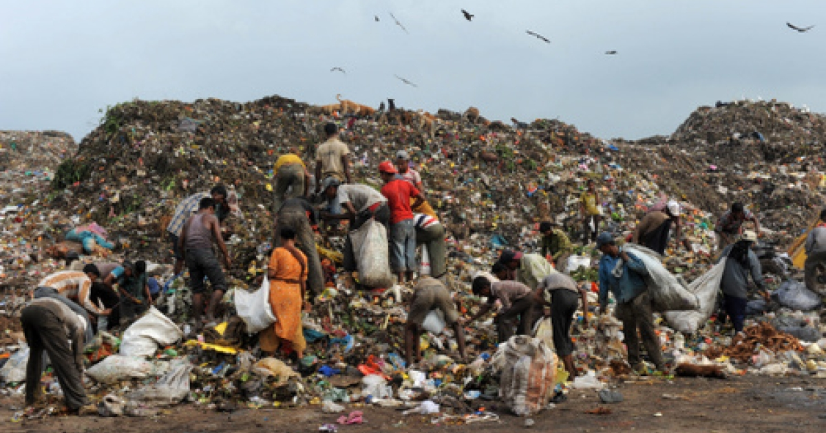 Filthy rich? Indian ragpickers search for re-cyclable materials among rubbish at a dumping ground of the Ahmedabad Municipal Corporation near Ahmedabad on September 13, 2011.</p>
