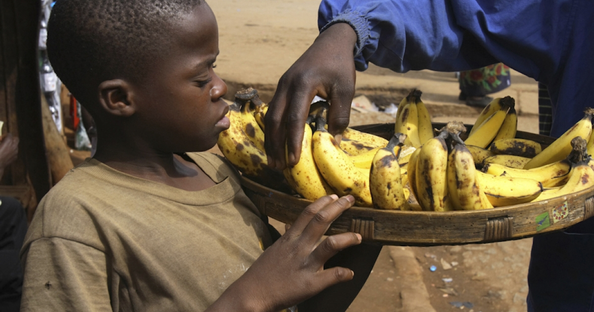 A boy sells bananas in Manica town near Mozambique's border with Zimbabwe. Rumors of flesh-eating bananas in Mozambique - and in particular, bananas grown in neighboring South Africa's province of KwaZulu-Natal - have caused sales of the fruit to drop.</p>