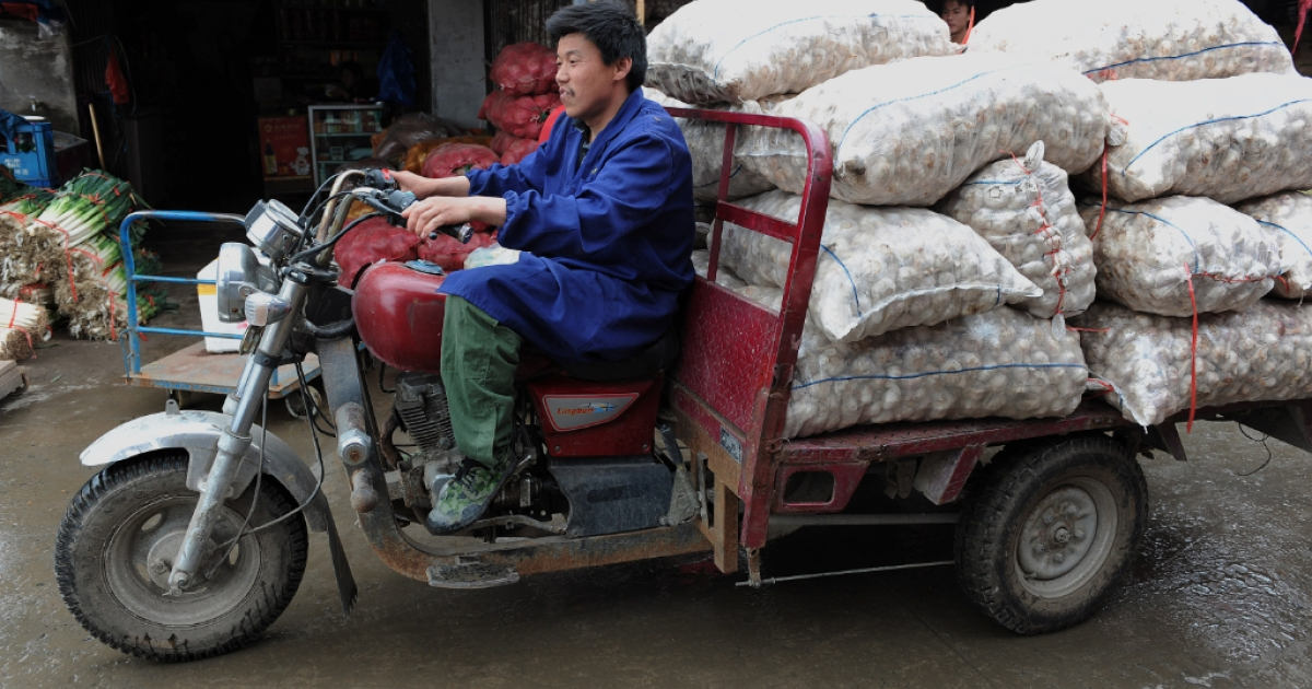 A Chinese worker transports bags of garlic at a market in Hefei, central China's Anhui province on May 19, 2010.</p>