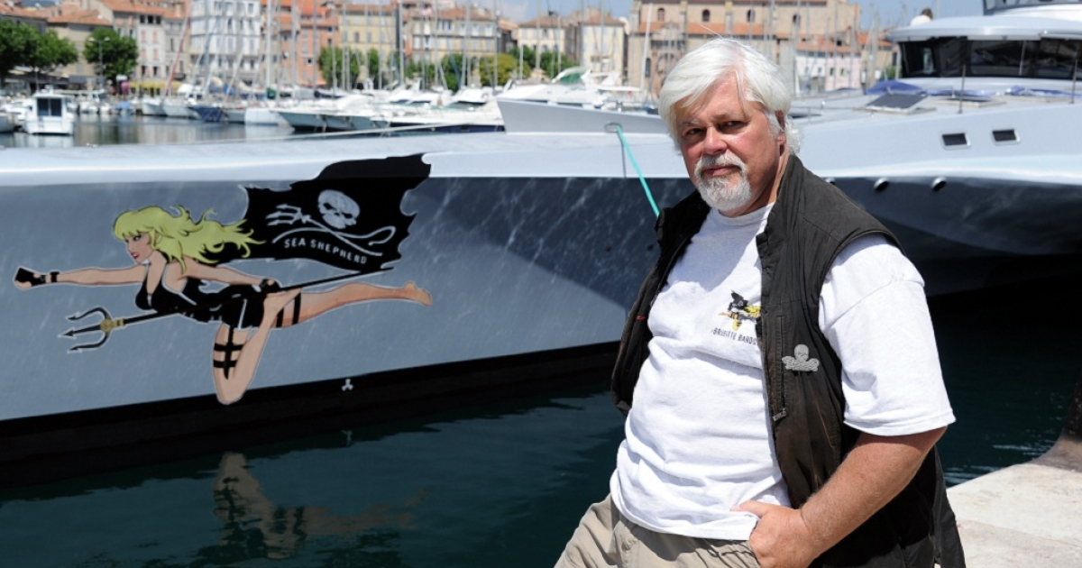 Paul Watson, Canadian founder of the Sea Shepherd Conservation Society, a direct action group for marine conservation.  He has been released on bail after spending a week in jail on charges of endangering a Costa Rican fishing boat in 2002.</p>