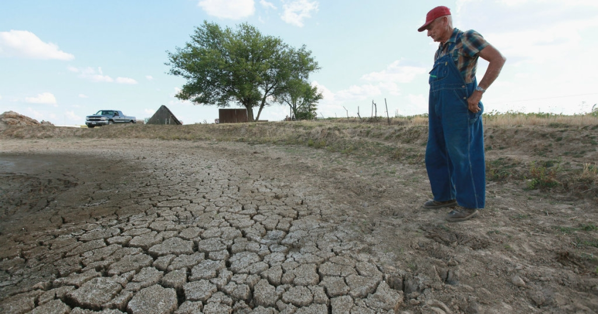 Marion Kujawa looks over a pond he uses to water the cattle on his farm on July 16, 2012 in Ashley, Illinois. Kujawa has been digging the pond deeper after it began to dry up during the current drought. According to the Illinois Farm Bureau, the state is experiencing the sixth driest year on record.</p>