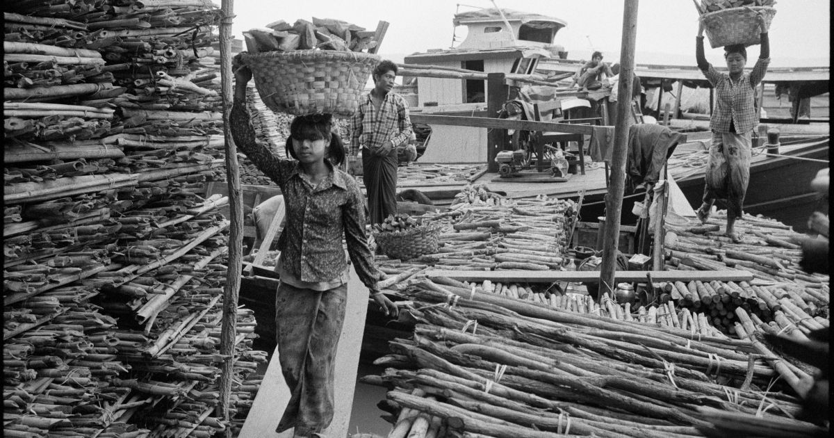 Young women dock workers unload firewood from ferries on the Irrawaddy River in Mandalay.</p>