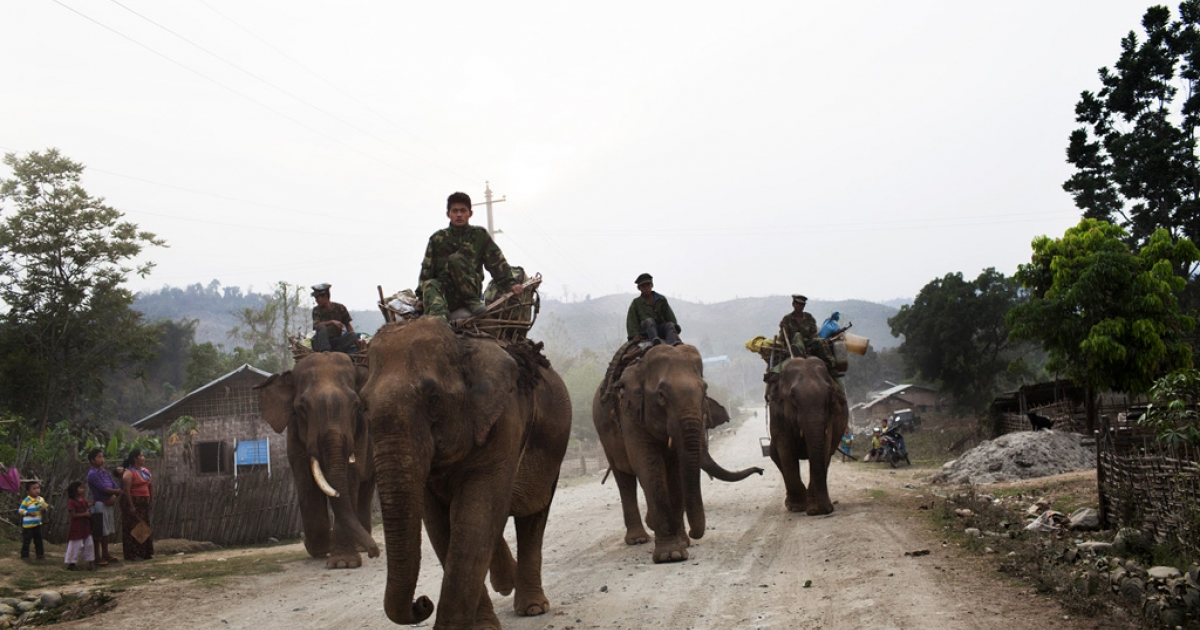 Kachin Independence Army soldiers ride elephants toward the front lines in Kachin state, Myanmar, April 1, 2012.</p>