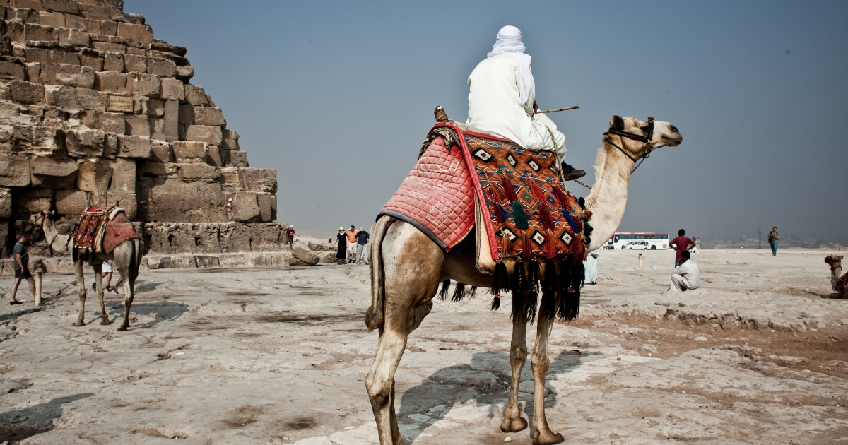 Camel drivers around the Great Pyramids of Giza on October 16, 2011 near Haram in Giza, Egypt.</p>