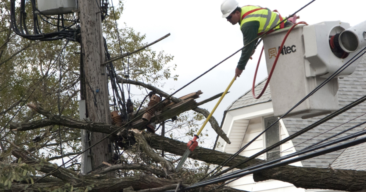 A tree trimmer removes branches from a power line on City Island November 1, 2012 in New York. Clean up continues from the damage done by Hurricane Sandy.</p>