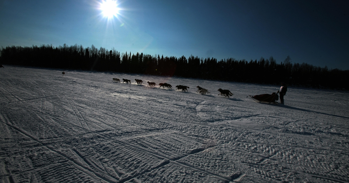 Rookie Jon Korta mushes his sled dog team over frozen Willow Lake at the start of the Iditarod in 2007.</p>